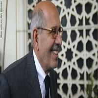 تصویر البرادعی خواستار تحریم انتخابات پارلمانی مصر شد