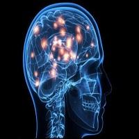تصویر مغز مانند اثر انگشت منحصر به فرد است