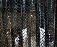 محمد مرسی به اعدام محکوم شد
