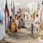 تصویر عراق و سوریه ۱۳.۵ میلیون آواره جنگی دارند