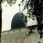 Photo of فراخوان برگزاری مراسم روز عرفه در مسجدالاقصی