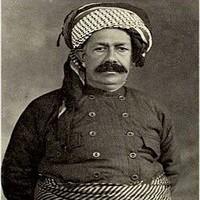 Photo of زندگینامه شیخ محمود برزنجی