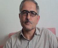 محمود محمودی