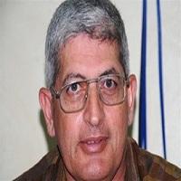 تصویر دولت مصر یک عضو برجسته اخوانالمسلمین را دستگیر کرد
