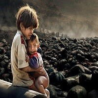 تصویر برندگان جایزه نوبل: شورای امنیت در مورد آراکان وارد عمل شود
