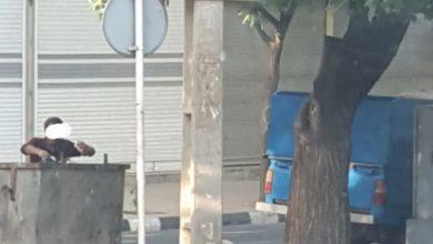 تصویر فریادها ونداهای سطل زباله محله ی ما…