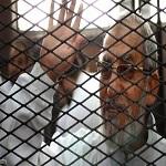 تصویر جانشین رهبر اخوانالمسلمین مصر انتخاب شد