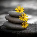 تصویر چهار قانون زندگی، عشق، تصحیح افکار، عمق حضور خدا