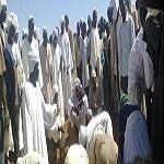 تصویر فریاد کمک مسلمانان دارفور بلند است