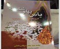 گزارشی متفاوت از بیست و هشمین نمایشگاه بینالمللی کتاب تهران