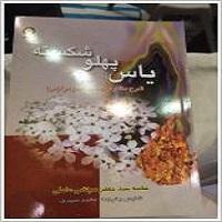 Photo of گزارشی متفاوت از بیست و هشمین نمایشگاه بینالمللی کتاب تهران
