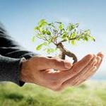 تصویر حفظ محیط زیست از دیدگاه اسلام