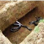 تصویر عذاب قبر بعد از سوختن یا از بین رفتن جسد