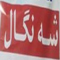 Photo of آزادی شنگال مبارکباد اما… کاش …