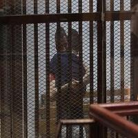 Photo of صدور حکم آزادی برای ۸۲ زندانی در مصر