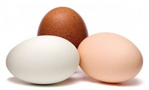 Photo of چند نکته مهم در مورد تخم مرغ