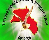 شاهین های آزادی کردستان